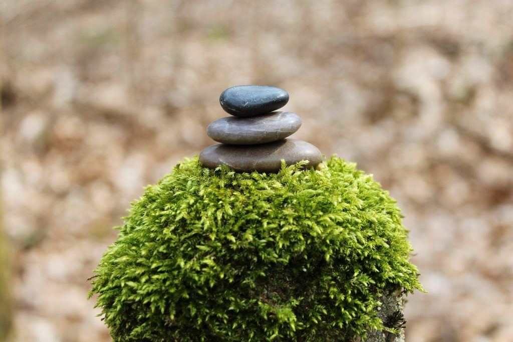 wholesome-living-ayurveda-balance