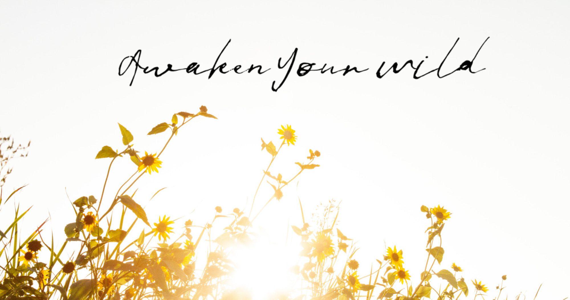 Awaken Your Wild
